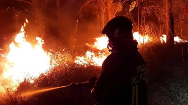 Bodrum Belediye Başkanı Aras, Mazı-Çökertme arasındaki yangını canlı yayınladı: Artık ne yapacağımızı şaşırdık