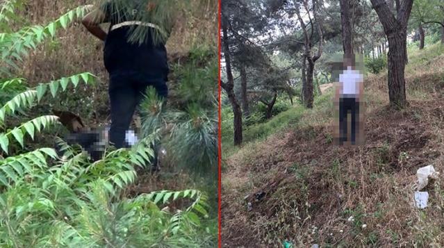 Ailesi Tarafından Aranan Adam Ağaca Asılı Halde Bulundu