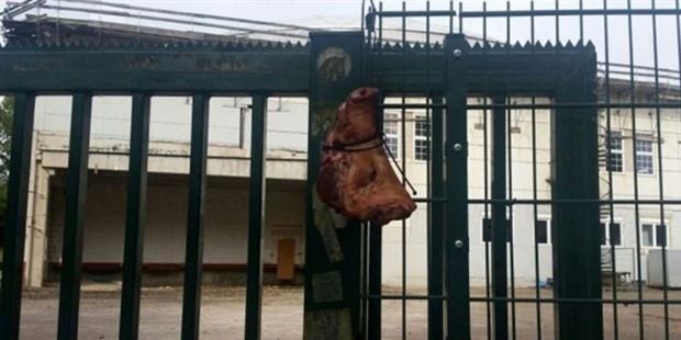 Almanya'da şok eden görüntü: Camiye domuz kafası astılar!