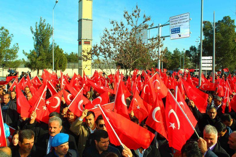 Diyarbakır'da binlerce kişi Türk bayraklarıyla teröre tepki gösterdi
