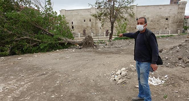 Sivas'ta fırtına ağaçları kökünden söktü