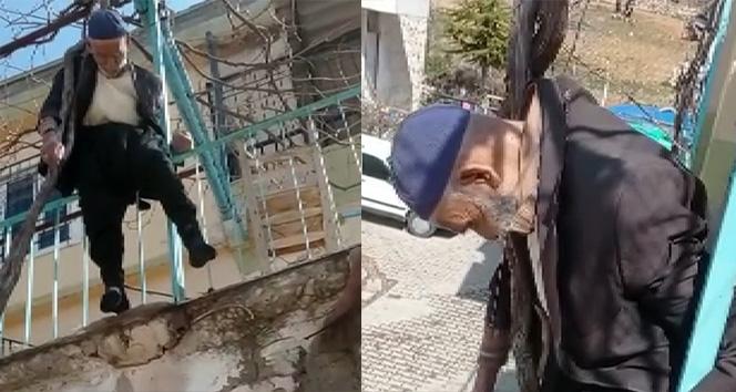 Yaşlı adam çıktığı ağaçta asılı kaldı