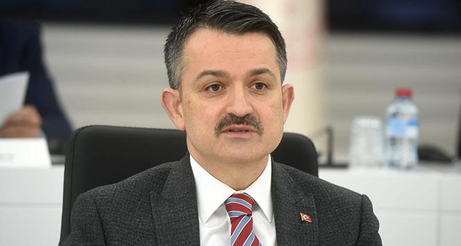 Bakan Pakdemirli: '140 milyon liralık destek bugün hesaplara aktarılacak'