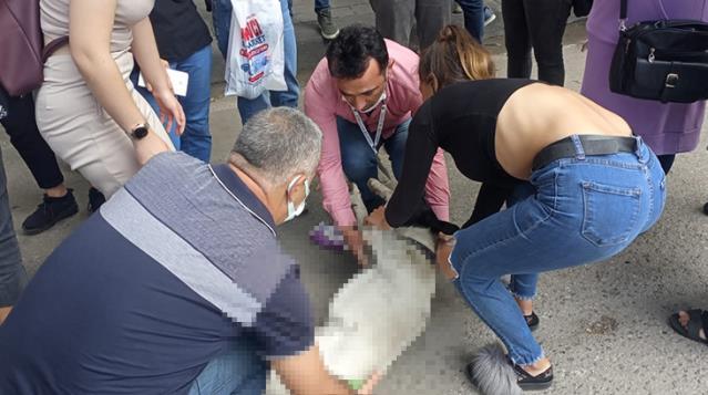 Dolmuş tarafından ezilen köpeğe, dakikalarca kalp masajı yaparak hayata döndürmeye çalıştılar