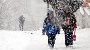 Ordu ve Trabzon'da eğitime kar engeli