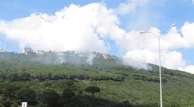 İstanbul'da orman yangını'Olay yerine ekipler gönderildi