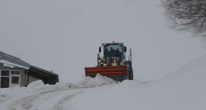 Muş'ta 234 köy yolu ulaşıma kapandı