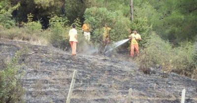 Sakarya'da korkunç yangın:1 kişi yanarak can verdi!